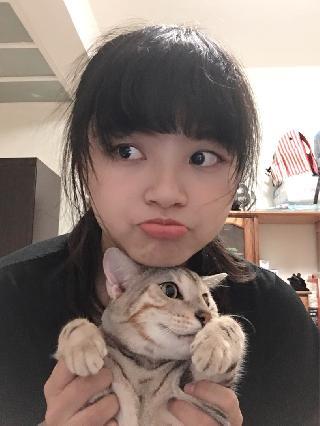 Baky, Pet Sitter in New Taipei City