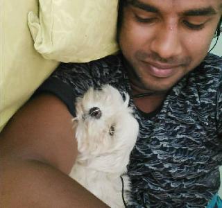 ravi, Pet Boarder in Bengaluru