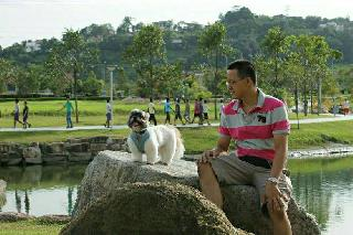 Ping, Pet Driver in KL